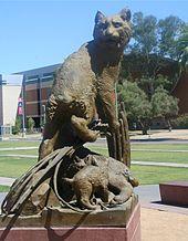 亚利桑那大学